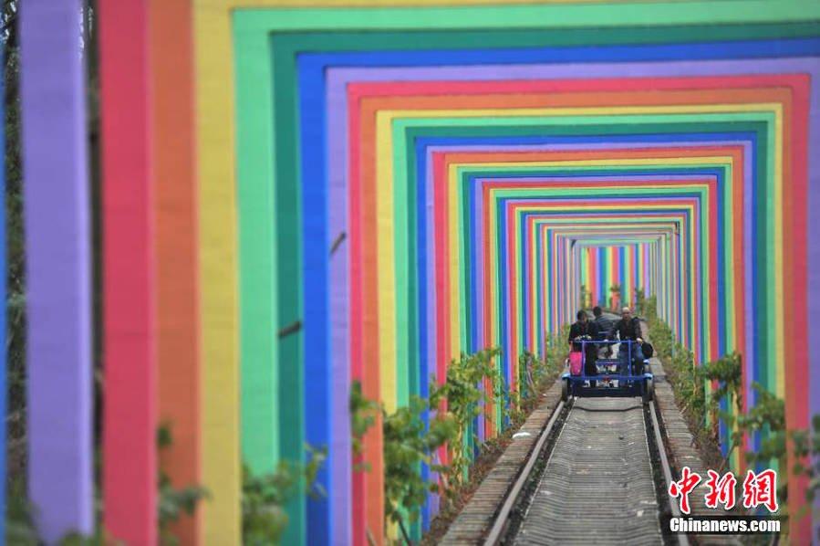 虹トンネル01
