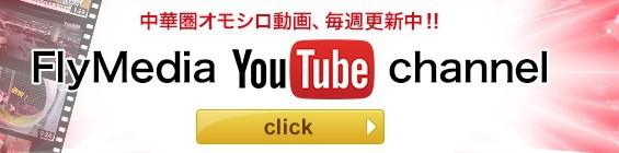 フライメディア動画