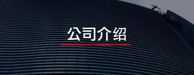 FLY MEDIA 公司介绍