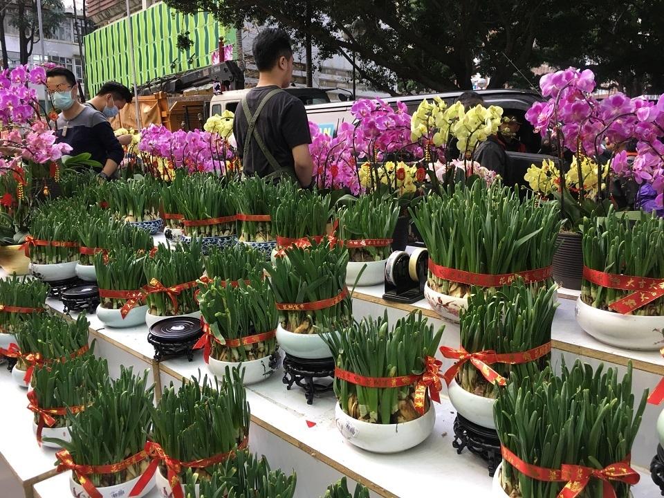 香港:旧正月前に賑わいを見せるフラワーマーケット