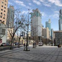 今週の上海は?少しずつ動きだした都市、それでも外出自粛はつづく!