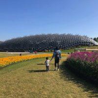 植物大好きが絶対行きたくなる上海の「辰山植物園」、連休中は多彩なイベントも!
