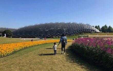 上海•巨大な温室でも有名な植物園