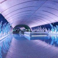 完全無人運転!!地下鉄15号線の誕生で、上海生活もますます便利に!