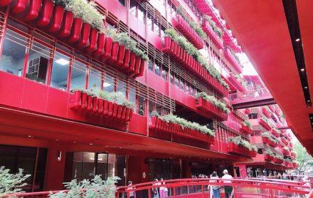 上海・赤と緑が意外とマッチしている